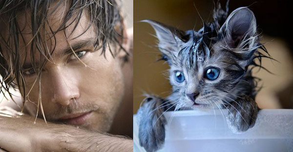 Sexy-Men-and-Adorable-Cats-11
