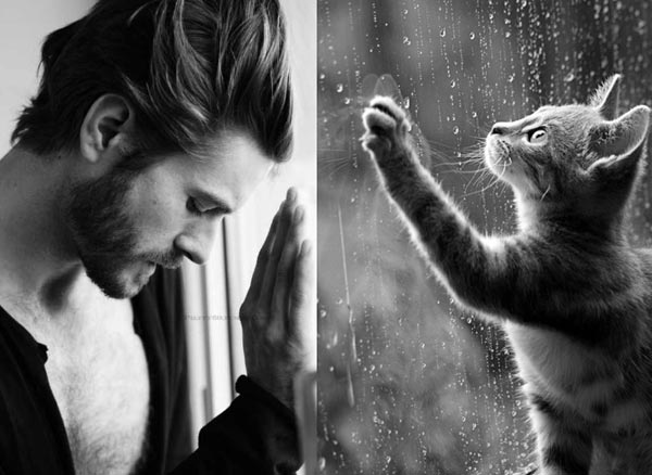 Sexy-Men-and-Adorable-Cats-17