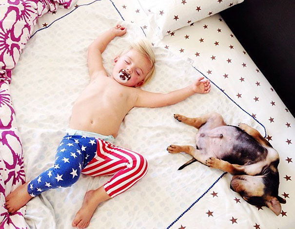 toddler-naps-with-puppy-theo-and-beau-9