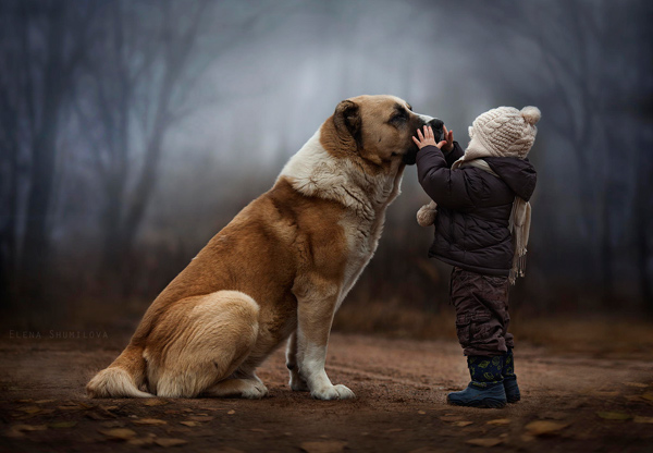 Boy-with-Animals-1
