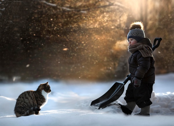 Boy with Animals 2