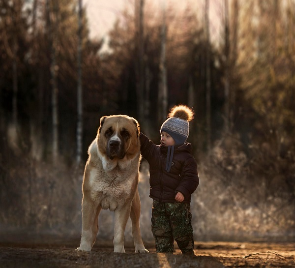 Boy with Animals 5