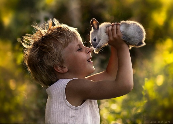 Boy with Animals 7