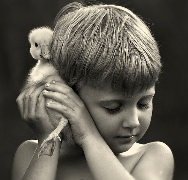 Boy with Animals 8