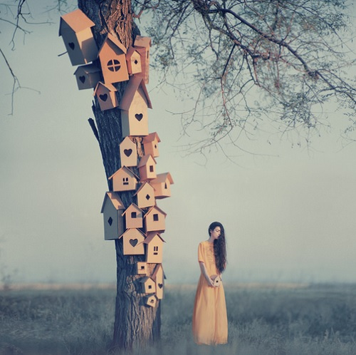 Beautiful Surreal Photos 7