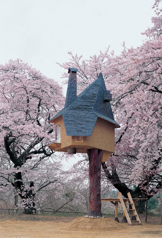Treehouse in Cherry Blossoms 1