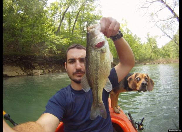 animal-photobomb-6