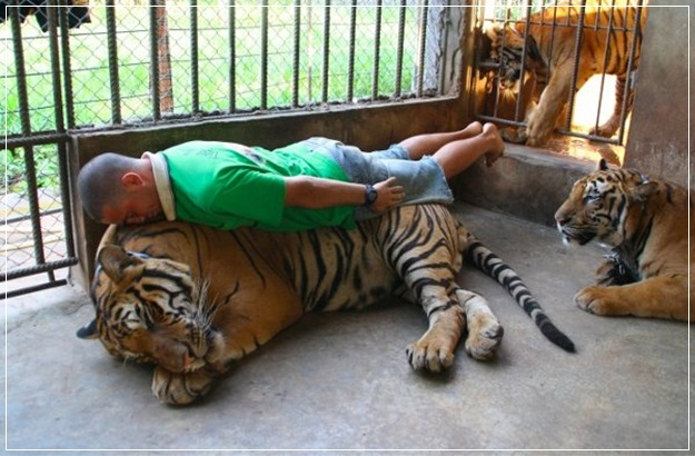 Planking-Pictures-23
