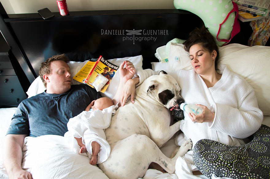 best-case-scenario-realistic-family-chaotic-photography-danielle-guenther-8