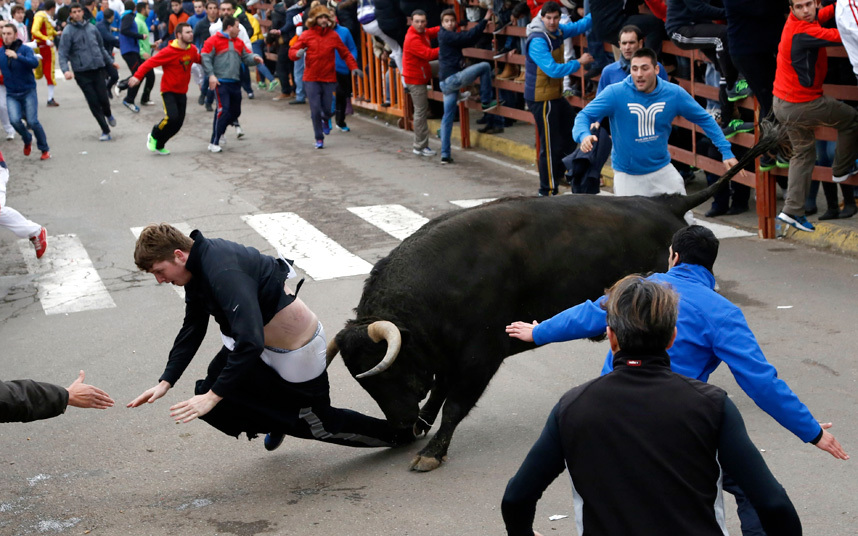 Benjamin Miller, 20, from Georgia, in the US, is gored by a bull during the 'Carnaval del Toro' in Ciudad Rodrig