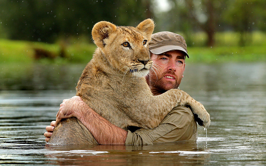 human 'dad' Ben Britton offering support to 8-month-old lion cub 'Mal' as they went for a swim in the pond