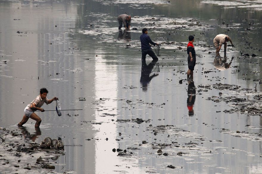 Fishermen picking fish in a polluted canal, Beijing