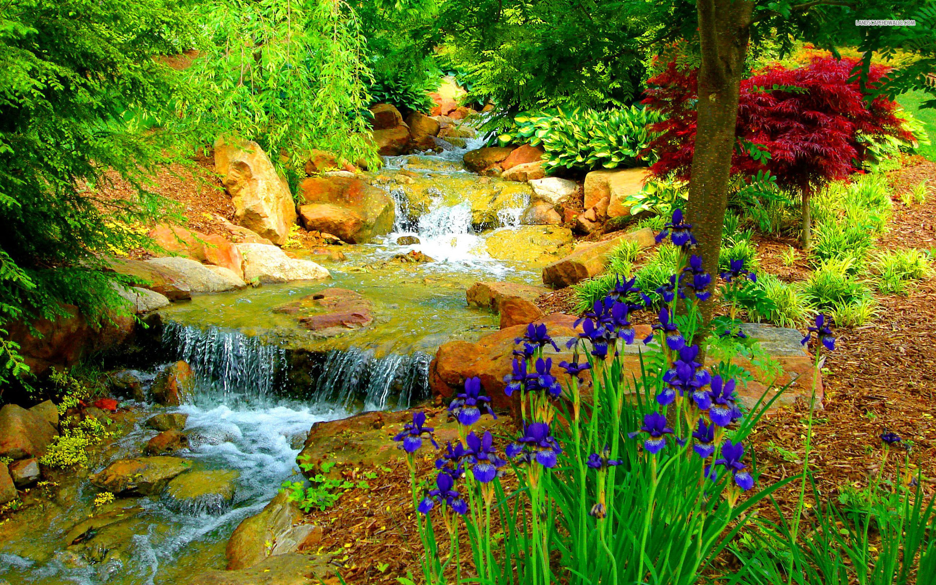 12 Beautiful Garden HD Wallpapers for Desktop