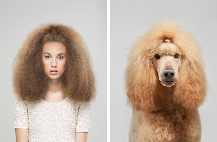 Photographer Captures Photos of Humans and Dogs Who Look Strangely Alike