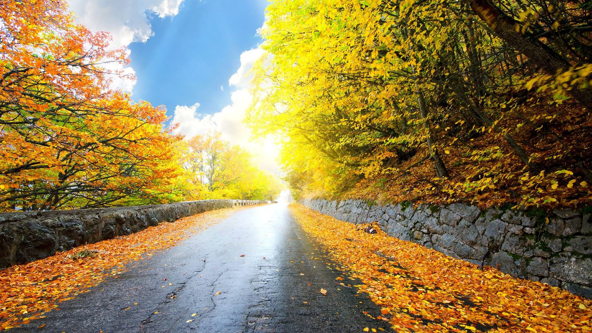 Autumn Roads Gold Yellow Foliage Scenery Wallpaper 1080p