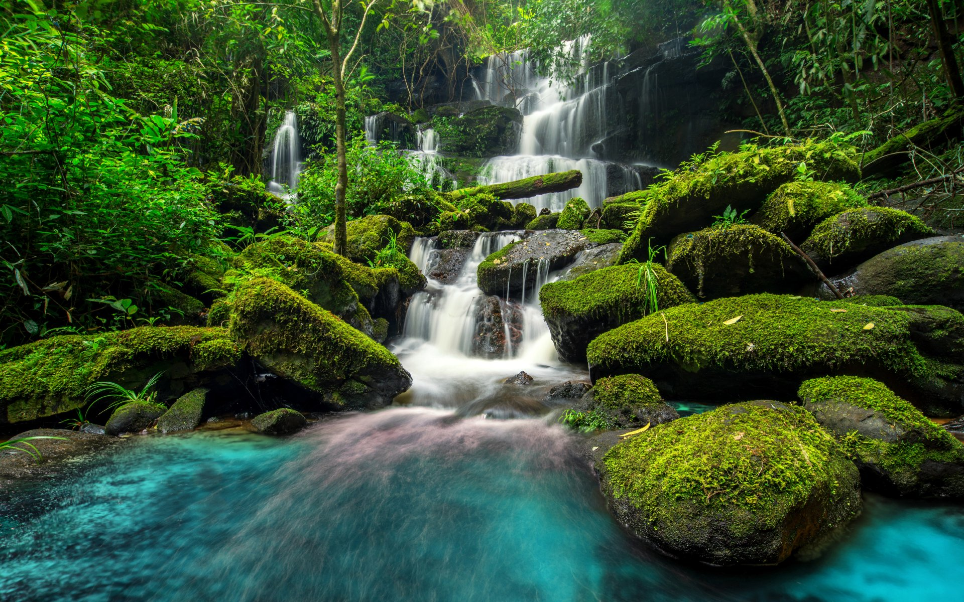 Beautiful waterfall in green forest wallpaper