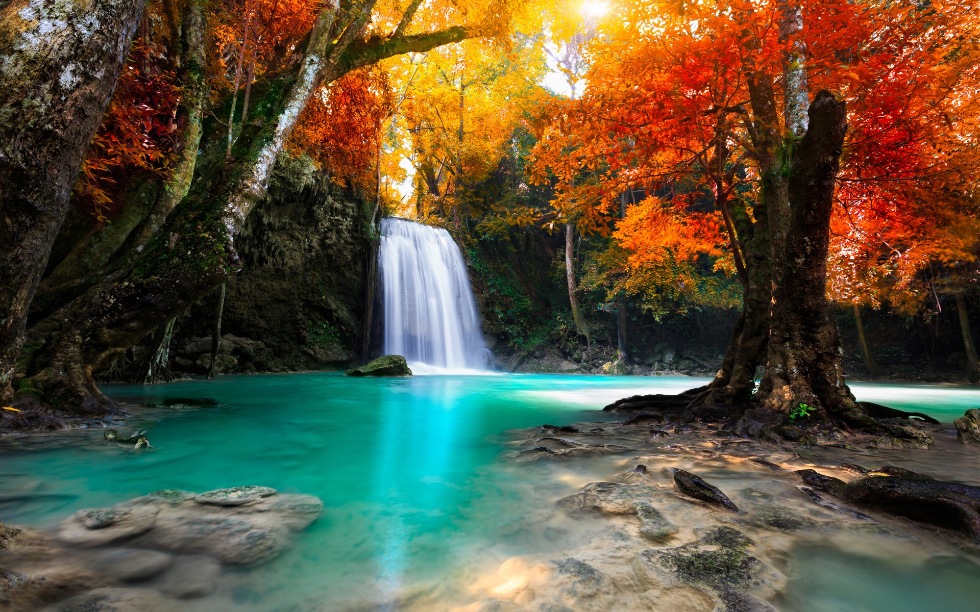 Waterfall Amongst Forest Trees in Autumn